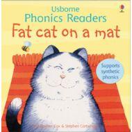 Fat cat on a mat