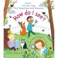 Lift-the-flap first questions and answers - How do I see?