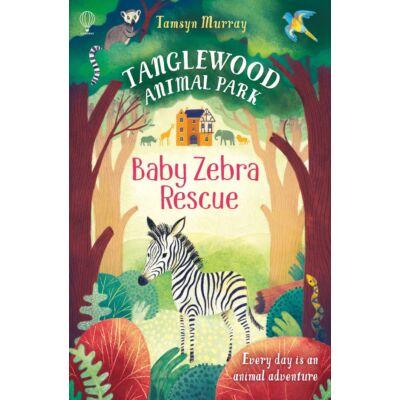 Baby Zebra Rescue