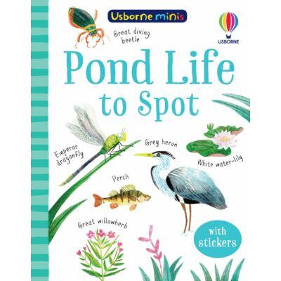 Pond Life to Spot (Usborne Minis)
